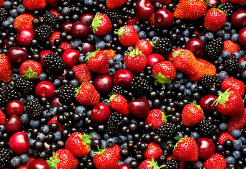 LSC-BR&Me-Summer-Fruits-11